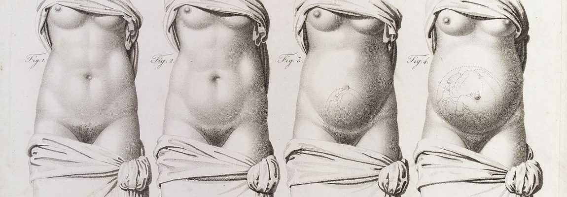 Stages_in_pregnancy_as_represented_by_the_growth_of_the_womb_Wellcome_L0038224